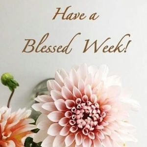 Other - 💐HAVE BLESSED WEEK!💐